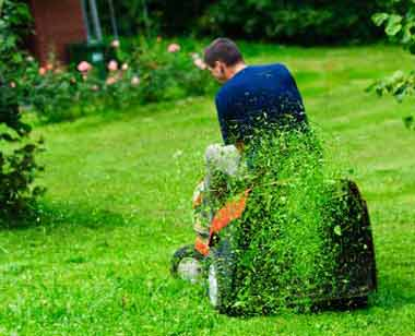lawn mowing and garden maintenance services in Melbourne