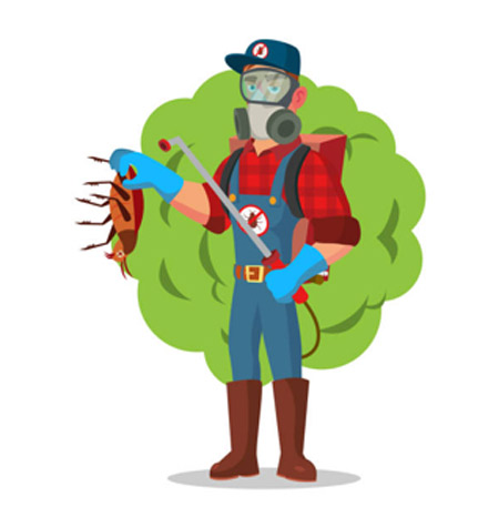 pest control services in Melbourne