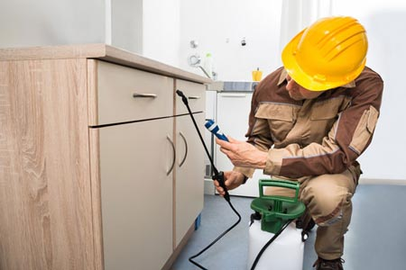 commercial pest control in Melbourne