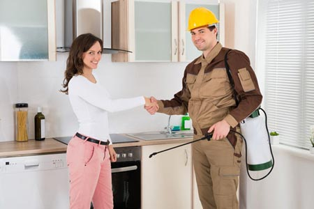 Cheap pest control services in Melbourne.